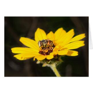 Abeja en la flor tarjeta de felicitación