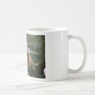 Abeja en la flor taza de café