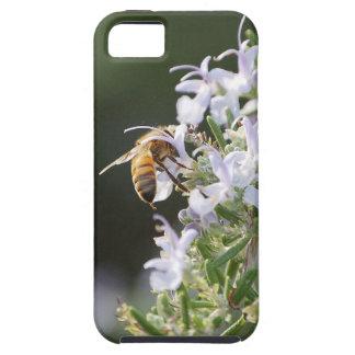 Abeja en la planta de Rosemary Funda Para iPhone SE/5/5s