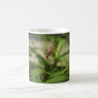 Abeja en la taza de la fotografía del Wildflower