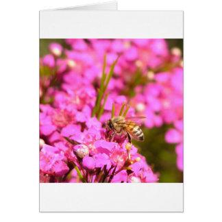 Abeja en las flores rosadas tarjeta de felicitación
