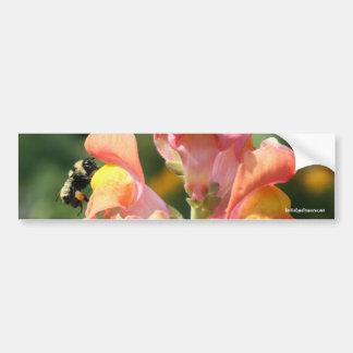 Abeja en pegatina para el parachoques de la foto d etiqueta de parachoque