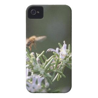 Abeja en Rosemary Carcasa Para iPhone 4 De Case-Mate