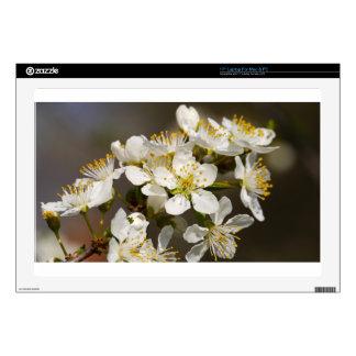 Abeja-flor hermosa portátil 43,2cm skins