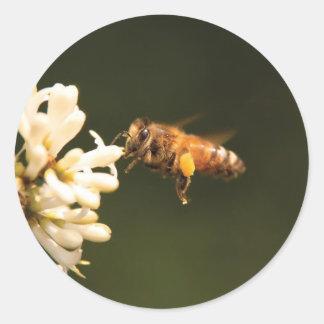 Abeja - miel soy hogar pegatina