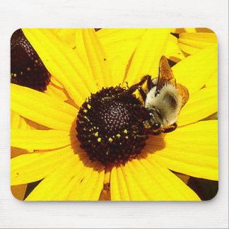 Abeja reina observada negro amarillo Mousepad de Tapete De Raton