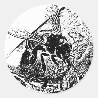 abeja sorbiendo miel classic round sticker