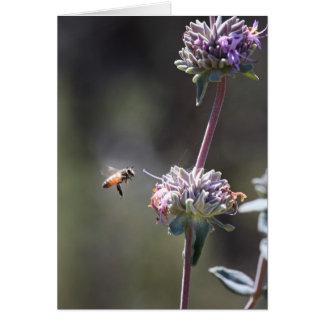 Abeja y flor tarjeta de felicitación