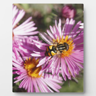 Abeja y flores falsas placas para mostrar