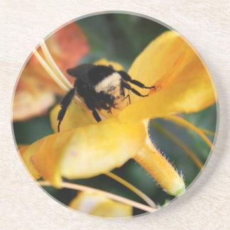 Abeja y lirio tigrado de la miel posavasos diseño