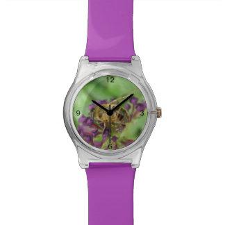 Abeja y reloj púrpura de las flores