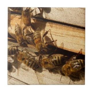 Abejas de la miel tejas