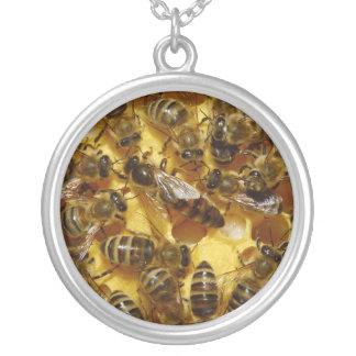 Abejas de la miel en colmena con la reina en centr collar plateado