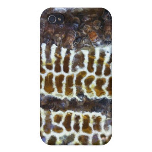 Abejas de la miel en el peine iPhone 4 cárcasa