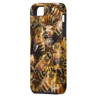 Abejas de la miel iPhone 5 carcasa