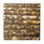 Abejas de la miel por todas partes teja cerámica