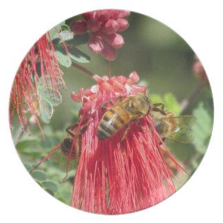 Abejas en la placa rosada de la flor platos