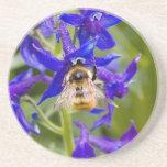 Abejorro en la flor púrpura posavasos personalizados