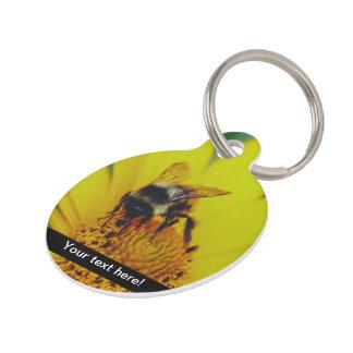 Abejorro en una macro amarilla de la flor identificador para mascotas