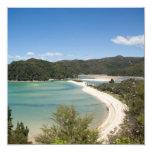 Abel Tasman N.P. Shore DSC8721 Custom Announcements