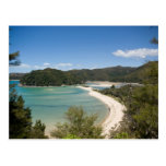 Abel Tasman N.P. Shore DSC8721 Postcards