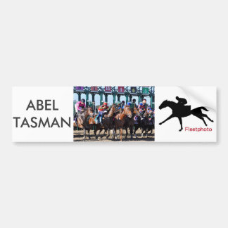 Abel Tasman Taking a Bite Bumper Sticker