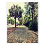 Abercorn Street At Colonial Cemetery Photo Print