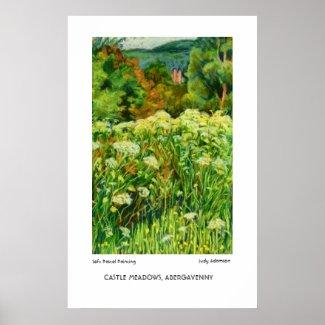 Abergavenny Castle Meadows Print or Poster print