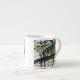 Abert's Squirrel Espresso Cup