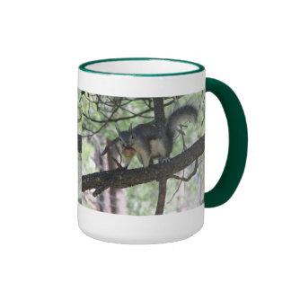 Abert's Squirrel Ringer Mug