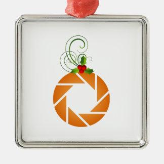 Abertura anaranjada con la puntilla del mirto adorno cuadrado plateado