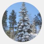 Abeto de la nieve pegatina