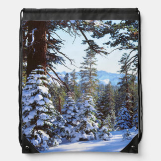 Abetos rojos nevados en High Sierra 2 Mochilas