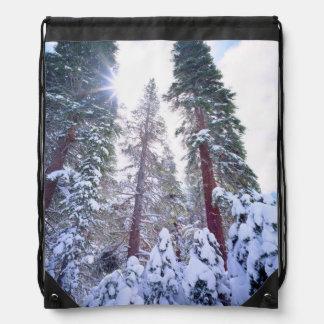 Abetos rojos nevados en High Sierra Mochila