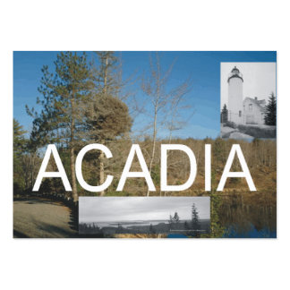 ABH Acadia Large Business Cards (Pack Of 100)