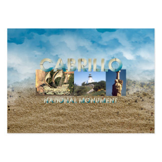 ABH Cabrillo Large Business Cards (Pack Of 100)