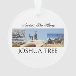 ABH Joshua Tree