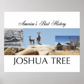 ABH Joshua Tree Poster