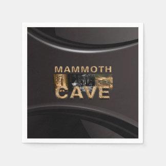 ABH Mammoth Cave Napkin