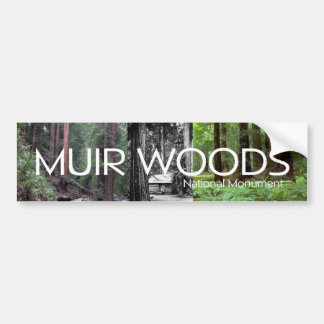 ABH Muir Woods Bumper Sticker