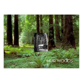 ABH Muir Woods Business Cards