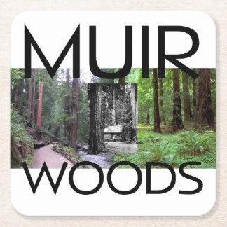 ABH Muir Woods Square Paper Coaster