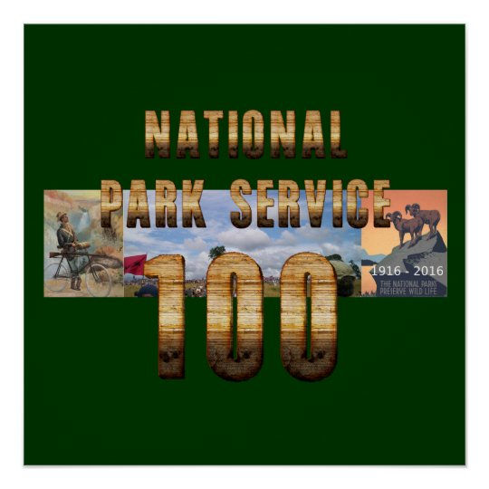 NPS 100th Souvenirs