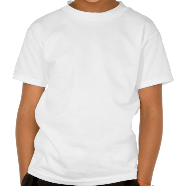 ABH Niagara Falls T Shirt