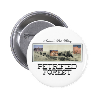 ABH Petrified Forest 2 Inch Round Button