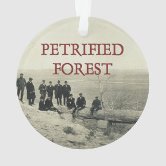 ABH Petrified Forest Ornament