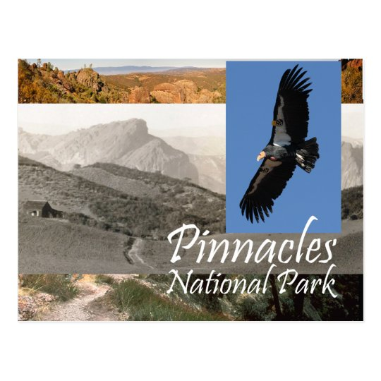 Pinnacles National Park T-Shirts and Souvenirs