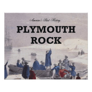 ABH Plymouth Rock Posters