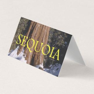 ABH Sequoia Business Card