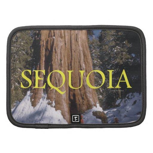 ABH Sequoia Organizers